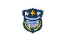 2011式保安臂章