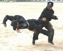 防卫和擒拿技能
